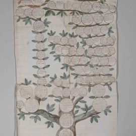 Albero Genealogico - Famiglia Tanzi - Bari Museo Civico