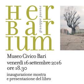 HERBARIUM-museo-civico-bari